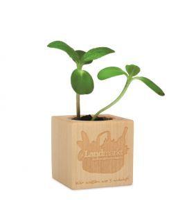 Planta-cub