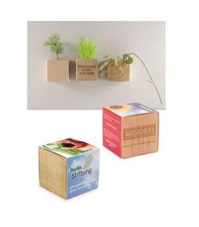 Planta – lemn – suport magnetic